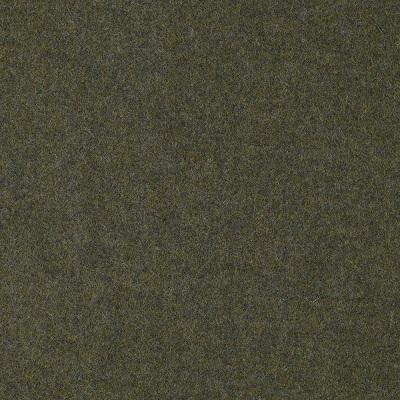 Moon, U1116-BE30-Melton1-Fern