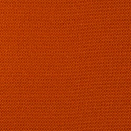 Innovasia Focus Kumquat