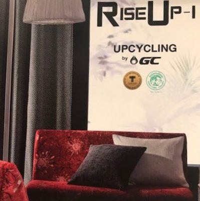 Pasaya Rise Up1 Cover
