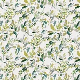 Bloom - Amile Emerald