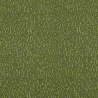 Java-Rainforest