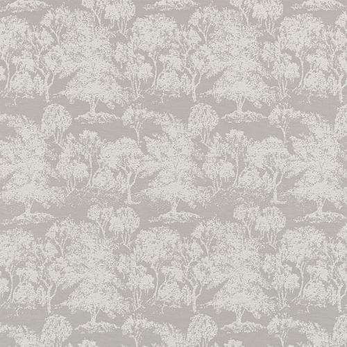Acacia-Dove